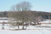 Wikinger Häuser Haithabu - Ansicht vom Südwall 06-03-2010